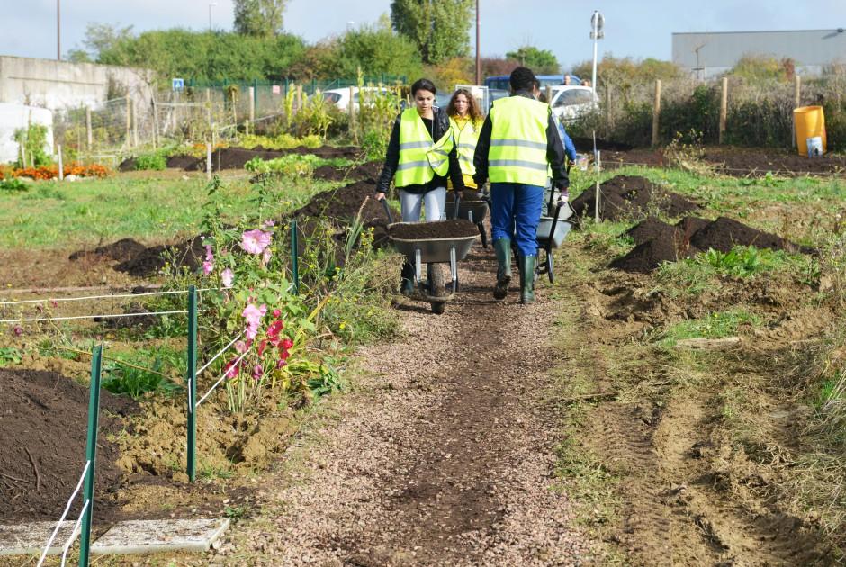 Ville de metz jardins familiaux et solidaires for Jardin familiaux