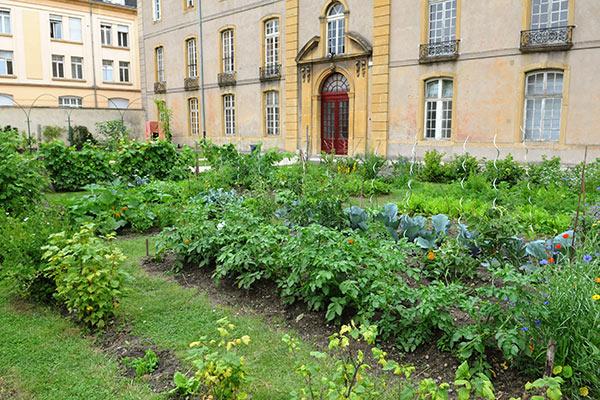 Ville De Metz Jardin Des Cinq Sens