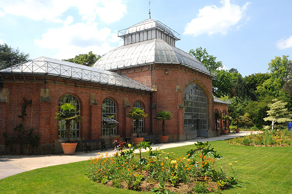 serres du jardin botanique - Jardin Botanique Metz